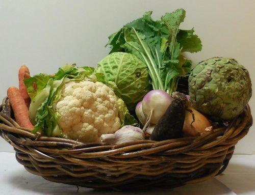 Alimentation Végane : A quel moment devenir végétarien ?